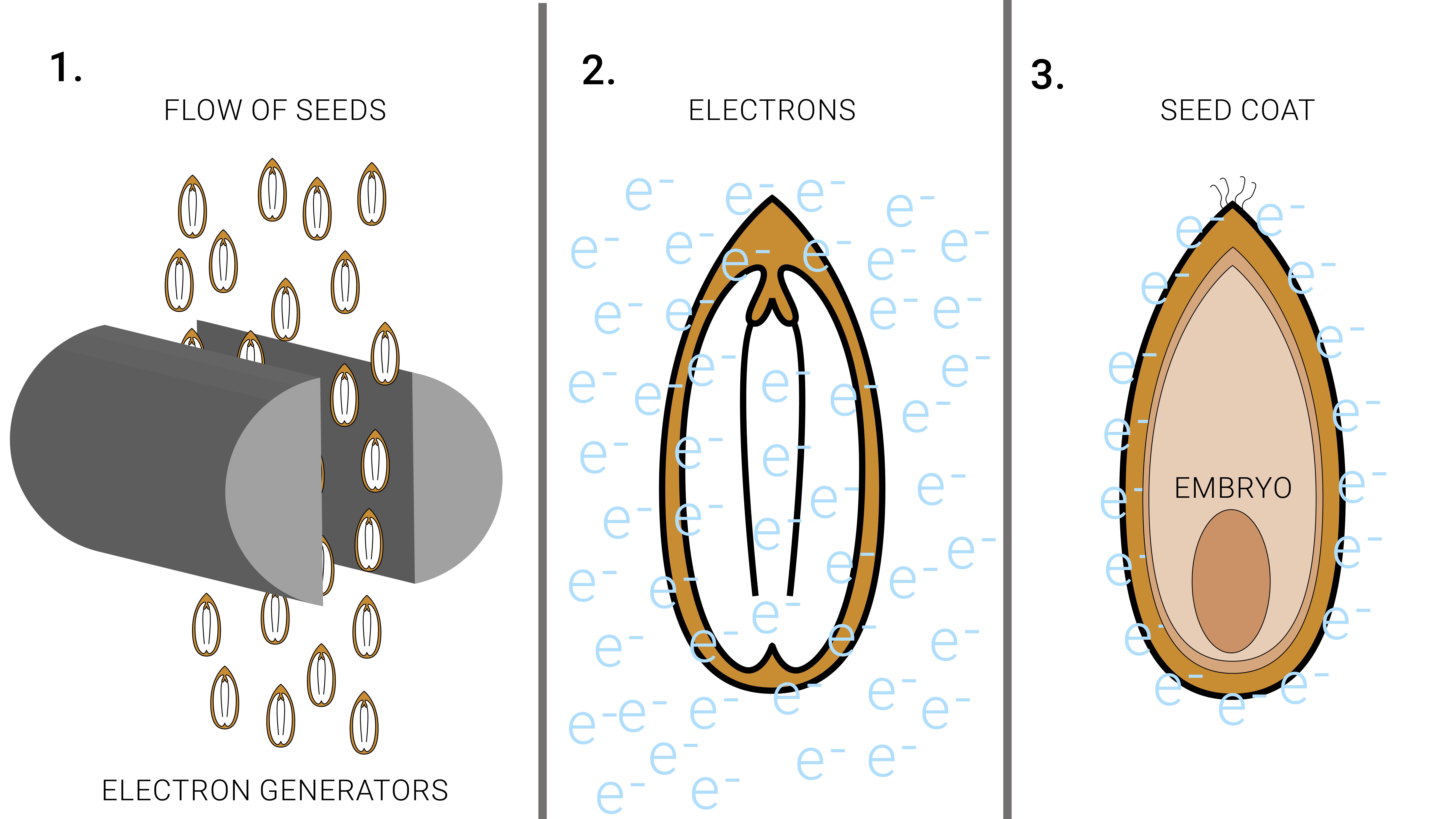 agrotech electron beam
